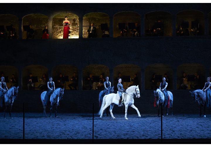 The Shows of the equestrian Academy of Versailles