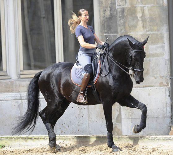 Pr 233 Sentation De L Acad 233 Mie 233 Questre De Versailles