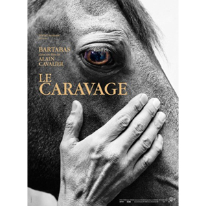 shop_dvd_caravage