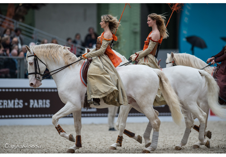The Shows of the equestrian Academy of Versailles 2f0056590d3
